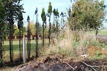 Požár tújí na zahradě rodinného domu v Horním Kostelci.