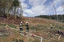 Požárem byla zasažena hůře přístupná plocha ve svahu o rozměrech zhruba asi 30 x 40m. Hasiči se snažili požár rychle lokalizovat, aby se oheň nerozšířil k vzrostlému lesu i lesní školce. Foto: SDH Červený Kostelec
