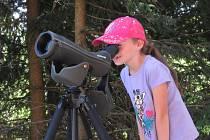 Zájemci budou mít možnost pomocí stativového dalekohledu pozorovat dospělé sokoly donášející potravu na hnízdiště na Chrámových stěnách.