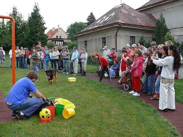 Psi z občanského sdružení Podané ruce pobavili děti nejen akrobatickými kousky, ale také tancem.