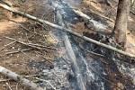 Požár lesního porostu v Ruprechticích.