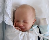 ONDŘEJ ŽĎÁRSKÝ z Broumova se narodil 14. listopadu 2017 v 10,14 hodin. Jeho míry byly 3190 gramů a 50 centimetrů.Rodiče Alena Michálková a Karel Žďárský mají doma ještě chlapečka Pavlíka.