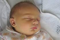 TOMÁŠ MEIER přišel na svět 16. ledna 2011 ve 21:28 hodin s délkou 50 cm a váhou 4040 g. S rodiči Janou a Jaroslavem, a s bráškou Lukáškem (6), má domov ve Žďáru nad Metují.