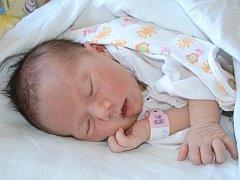 ADÉLA KOYŠOVÁ se narodila 22. května 2012 v 7:46 hodin s váhou 2900 gramů a délkou 48 centimetrů. S rodiči Magdou Kováčovou a Pavlem Koyšem, a se sourozenci Alžbětkou (necelé 3 roky) a Petrem (20 let), mají domov v obci Hejtmánkovice.