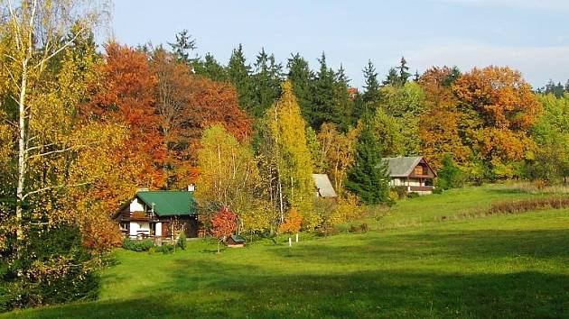 Stromy v krajině se už začínají podzimě probarvovat. Dočkáme se chymýří babího léta?