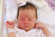 Vojtěch Krulich z Horní Radechové se narodil 29. října 2018 v 04,04 hodin. Jeho míry byly 3160 gramů a 49 centimetrů. Rodiče Lenka a Petr Krulichovi mají ještě chlapečka Péťu (2,5 roku).