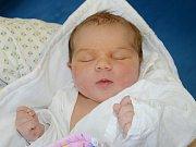 Hana Skřivánková z Božanova potěšila svým příchodem na svět rodiče Darinu Černochovou a Jaromíra Skřivánka. Holčička se narodila 4. února 2019 v 19,08 hodin, vážila 3530 g a měřila 49 cm. Doma se na ni těšil i desetiletý bráška Jirka.
