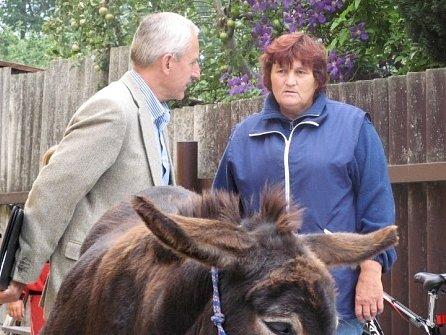 K hipoterapii  jsou využíváni nejen koně, ale také oslíci a další zvířata.