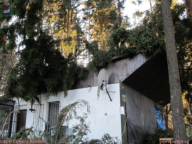 KALAMITU způsobil v úterý večer vichr okolo Červeného Kostelce. U Špinky popadalo padesát stromů.