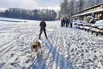 Krásné počasí přilákalo do nově upravených běžeckých stop v okolí červenokosteleckého kempu Brodský stovky pohybu chtivých lidí.