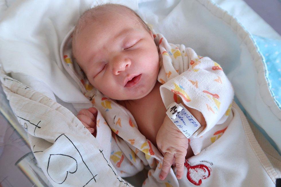 Adam Činčera z Nového Města nad Metují je prvním děťátkem manželů Sávy a Josefa. Chlapeček se narodil 8. října 2019 v 9,25 hodin a jeho míry byly 3090 gramů a 46 centimetrů.