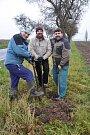 U Vlkova obnovují alej starých odrůd jabloní