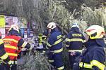 Spadlou větev u autobusové zastávky odstraňovali hasiči ve spolupráci s TS města Náchoda.