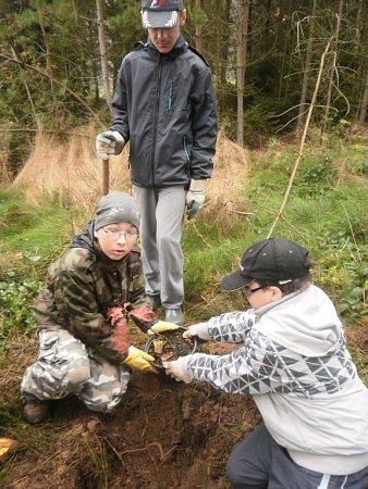 Den stromů prožila Základní škola vČeské Skalici. Žáci poznávali stromy vzahradě Vily Čerych, navštívili iLesní Království.