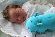 ELIŠKA VÁCHOVÁ potěšila svým příchodem na svět rodiče Nikol Váchovou a Marka Noska z Náchoda. Holčička se narodila 26. března 2017 ve 23.46 hodin, vážila 3395 gramů a měřila 48 centimetrů. Doma má šestiletou sestřičku Adélku.