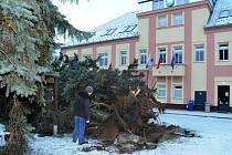 Kácení starých, přerostlých a nebezpečných stromú na náměstí ve Velkém Poříčí.