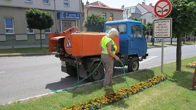 O květinovou výzdobu v Novém Městě nad Metují se starají zahradníci městských technických služeb. Jejich práci nyní ničí vandal.