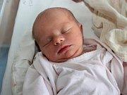 KAROLÍNA ČECHOVÁ z Nového Města nad Metují se narodila 26. listopadu 2016 v 16.35 hodin, vážila 2605 gramů a měřila 48 centimetrů. Svým příchodem na svět potěšila rodiče Veroniku Tauchmanovou a Václava Čecha.