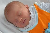 MONIKA ŠEVCOVÁ se narodila 6. března 2014 v 03:02 hodin s váhou 2890 gramů a délkou 49 centimetrů. S rodiči Vilmou a Pavlem a se sestřičkami Barborkou (7 let) a Michaelkou (4 roky) bydlí v obci Provodov.