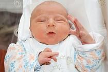 JIŘÍ LUKÁŠEK se narodil 18. ledna 2012 v 1:32 hodin s váhou 3845 gramů a délkou 51 centimetrů. S maminkou Jitkou a tatínkem Jiřím bydlí v obci Jasenná.