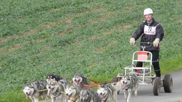 TRAŤ závodů psích spřežení v Červeném Kostelci vedla v okolí rybníka Brodský.