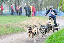 19. ročník závodů psích spřežení Barney 2014.