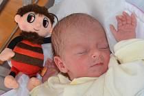 KRISTÝNA ČERVENÁ přispěchala na svět o měsíc dříve, a to 7. září 2016 v 11.38 hodin. Její míry byly 2355 gramů a 47 centimetrů. S rodiči Veronikou a Davidem bydlí v obci Chlívce, kde se na ni těšili bráškové Vítek a Kryštof.