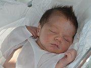 SAMUEL DVOŘÁK ze Dvora Králové nad Labem se narodil 7. září 2016 v 9.17 hodin rodičům Ivaně a Petrovi. Jeho míry byly 4 kilogramy a 52 centimetrů. Doma má dvouletou sestřičku Sofinku.