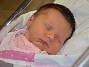 ELEN REJCHRTOVÁ poprvé vykoukla na svět 10. října 2016 v 15.22 hodin. Její míry byly 3150 gramů a 49 centimetrů. S maminkou Petrou a tatínkem Lukášem jsou z Jaroměře.