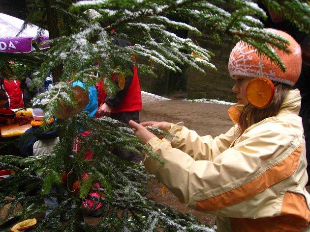 Vánoce v Adršpachu.