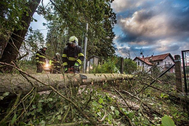 Královéhradecký kraj zasáhla vichřice na horách napadl sníh a v nížinách silný vítr lámal stromy.