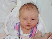 Terezie Slavíčková ze Zlíče je prvním děťátkem maminky Jitky Bienové a tatínka Josefa Slavíčka. Holčička se narodila 2. února 2019 v 8,51 hodin a její míry byly 3470 gramů a 50 centimetrů.