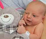 MAREK NOVÁK z Velkých Petrovic poprvé vykoukl na svět 2. října 2017, a to deset minut po půlnoci. Chlapeček vážil 3360 gramů a měřil 49 centimetrů. Ze svého prvorozeného děťátka se radují šťastní rodiče Jindřiška a Petr Novákovi.