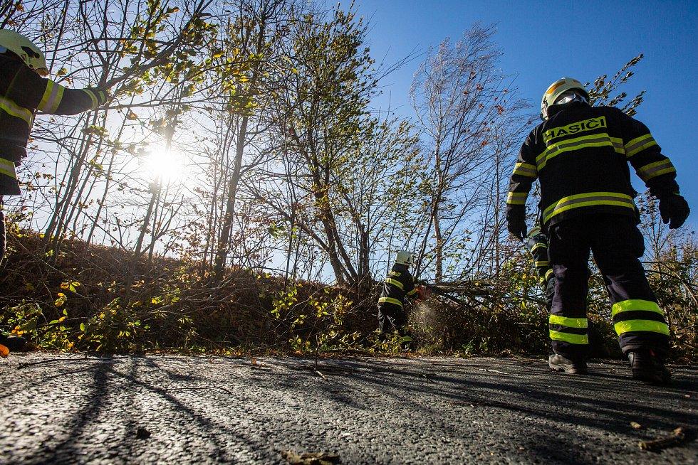 Spadlý strom v Novém Městě nad Metují. Od pondělního odpoledne do dnešního rána zasahovaly profesionální i dobrovolné jednotky hasičů v Královéhradeckém kraji v souvislosti se silným větrem u 30 událostí. Nejvíce práce mají jednotky na Hradecku, Rychnovsk