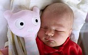 ROZÁRIE MABEL BALCIRÁKOVÁ z Nového Města nad Metují se narodila šťastným rodičům Petře Doležalové a Pavlu Balcirákovi, a to 6. listopadu 2017 ve 13,38 hodin. Její míry byly 3770 gramů a 54 centimetrů. Na sestřičku se doma těšili Dominik (12 let) a Tomáš (