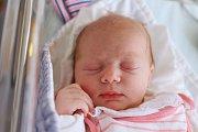 Sofie Viktorie Remešová z Nového Města nad Metují je na světě! Holčička se narodila 30. října 2018 v 16,50 hodin, vážila 3300 gramů a měřila 48 centimetrů. Z prvního děťátka se radují rodiče Marie Podstatová a Jan Remeš.