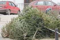 Vyhozené vánoční stromky. Ilustrační snímek.