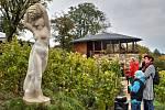 SOCHA KUKSKÉ BOHYNĚ VÍNA byla v pátek slavnostně odhalena v Kuksu na vinohradu Stanislava Rudolfského. Skulptura zachycuje ženu v rotačním pohybu s kmenem révy a s hroznem nad hlavou, k němuž vzhlíží. Autorem díla je sochař Petr Novák z Jaroměře.