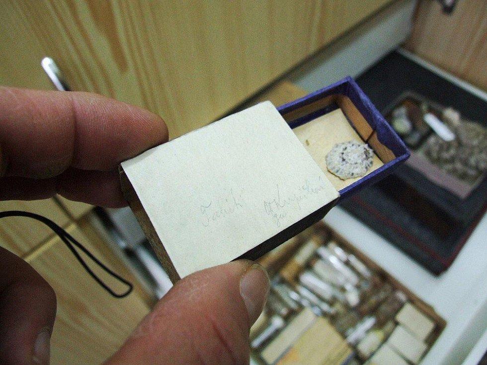 Otevřeme - li krabičku, objevíme v ní schránku plže přílipky pocházející   až z exotického Tahiti.