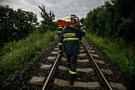 Spadlý strom na koleje zastavil dnes ráno dopravu na železnici, když do něj narazil nákladní vlak.