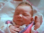NATÁLIE HEJDOVÁ potěšila svým příchodem na svět rodiče Hanu a Josefa z Červeného Kostelce. Narodila se 9. května 2017 ve 12.30 hodin,vážila 3660 gramů a měřila 50 centimetrů. Doma má sedmiletou sestřičku Veroniku.