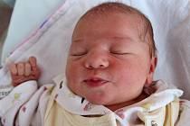 HANA ŠTĚPÁNSKÁ z Bezděkova potěšila svým příchodem na svět rodiče Danu Foglarovou a Filipa Štěpánského. Holčička se narodila 5. června 2017 v 8.44 hodin, vážila 3050 gramů a měřila 50 centimetrů. Doma se na ni těšila desetiletá sestřička Anička.