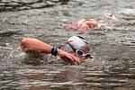 50. ročník zimního plavání v Náchodě.