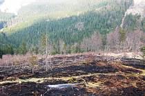 Na Ruprechtickém Špičáku shořel přibližně jeden hektar porostu.