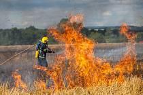 Požár pole u obce Městec.