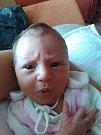 ELIŠKA LELKOVA se narodila 13. srpna se 2016 tatínkovi Přemyslovi a mamince Janě z Hronova. Holčička měřila 44 centimetrů a vážila 2625 gramů.