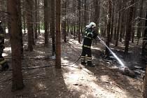 V lesích hořelo klestí, chytla i hrabanka a stromy.