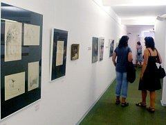 Dílo Emanuela Frinty, malíře, ilustrátora a grafika, představuje Galerie výtvarného umění v Náchodě.