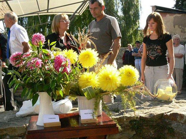 Návštěvníci letošních Jiřinkových slavností rozhodli, že symbolem těch příštích budou jiřiny Faberge a Halle Bopp.