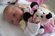 ZUZANA NÝVLTOVÁ poprvé vykoukla na svět 9. dubna 2017 ve 23.51 hodin. Její míry byly 3425 gramů a 48 centimetrů. Z prvního miminka se radují rodiče Michaela Nývltová a Michal Hlavatý z Jaroměře.